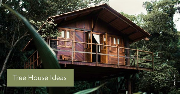 Treehouse Ideas: The Ultimate Guide - Articles for DIY community 1 by  image